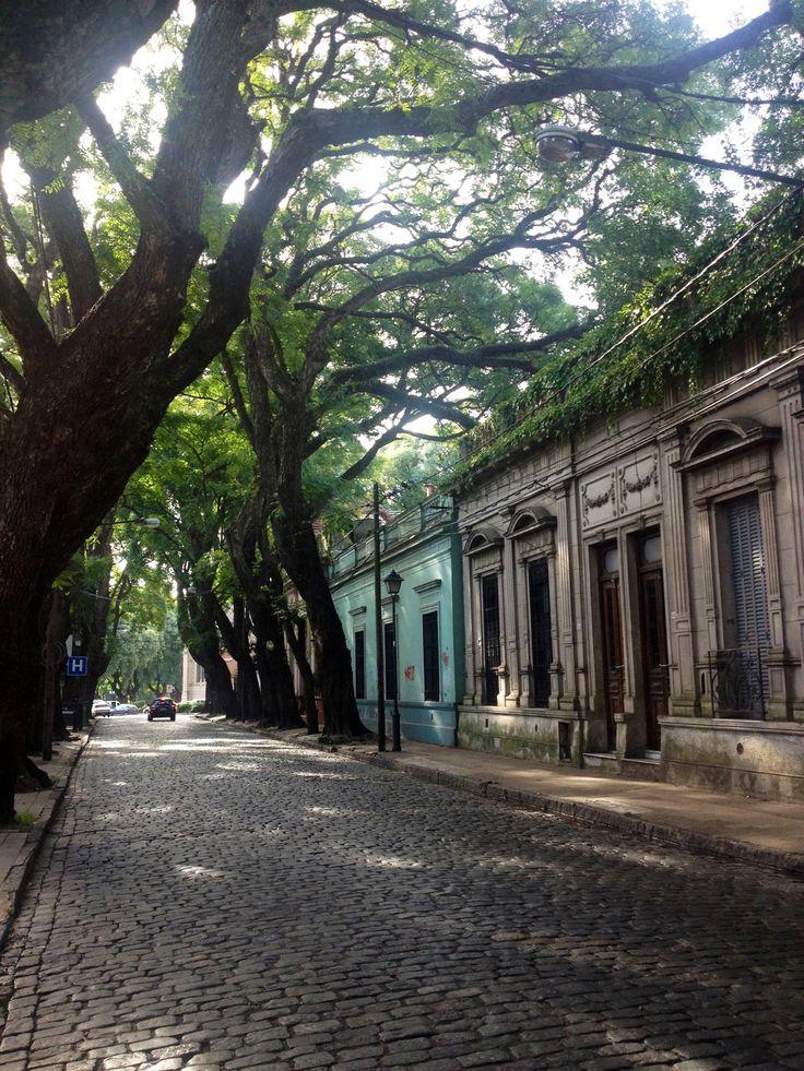 «San isidro//Buenos Aires, Argentina-»