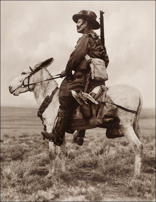 An Australian Light Horseman in Palestine viewing the Promised Land. Frank Hurley.
