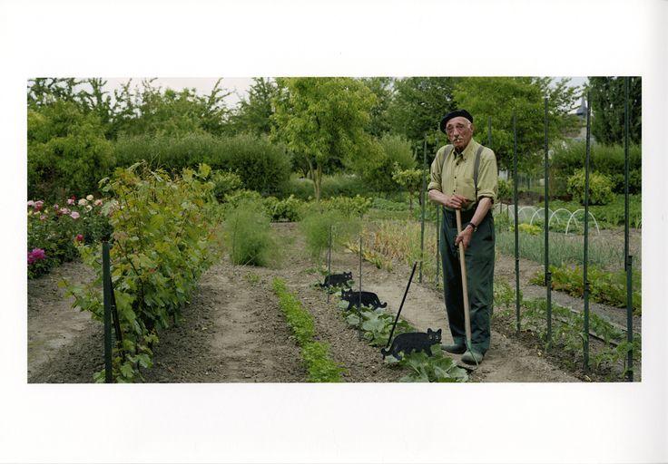 Guy Hersant, Jardin familial à Issoudun (Indre), tirage argentique, 2007 / ©Musée du Vivant - AgroParisTech