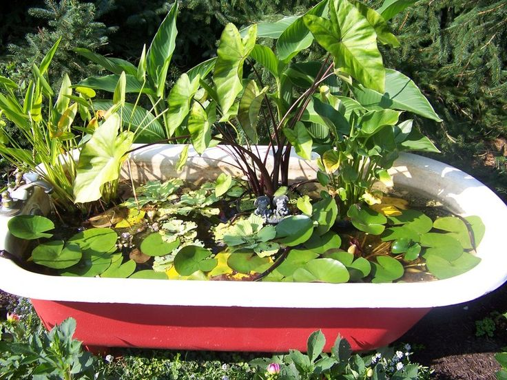 26 best landscaping images on pinterest bathtubs for Koi pond tubs