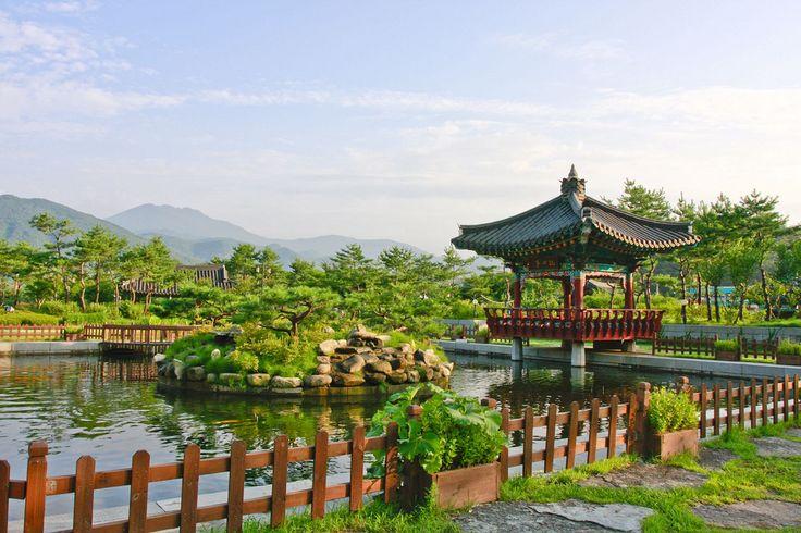 Serene Scene in Gwangju, South Korea