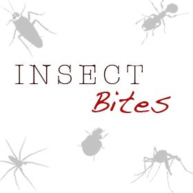 Insect Bites – Identification, Signs, Symptoms and Treatment Guide - http://spiderbites.net/insect-bites/