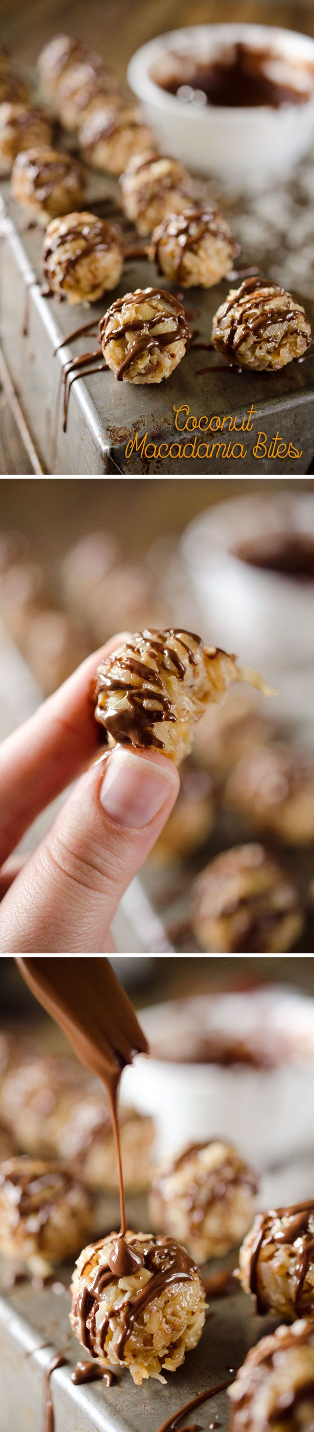 GF Coconut Macadamia Bites are rich little candies made with toasted coconut and macadamia nuts, caramelized sweetened condensed milk and sea salt all drizzled with dark chocolate for the perfect sweet and salty dessert!
