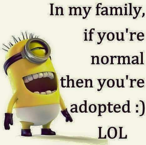 In my family, if you're normal then you're adopted ...
