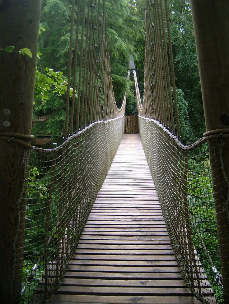 Walkway to the treehouse at Alnwick Castle Gardens.  Alnwick, England.