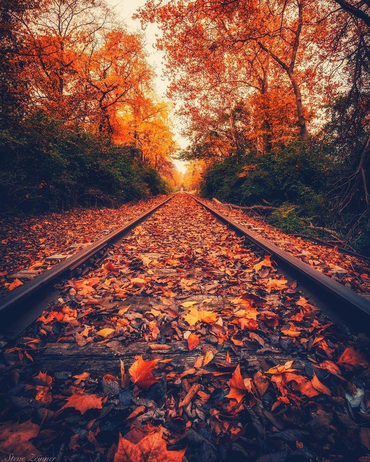 Best 25+ Autumn Photography Ideas On Pinterest