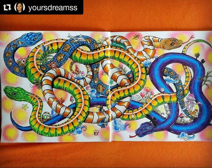 Snakes No Laddersjust Doodles Cool Colours Yoursdreamss Adult ColoringColoring BooksSnakeJohanna