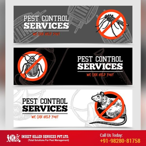 Pin On Insect Killer Service Pest Control