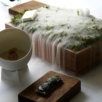Molecular Gastronomy || Moss Forest || by Heston Blumenthal || The Fat Duck Restaurant || via Margot's Kitchen Blog