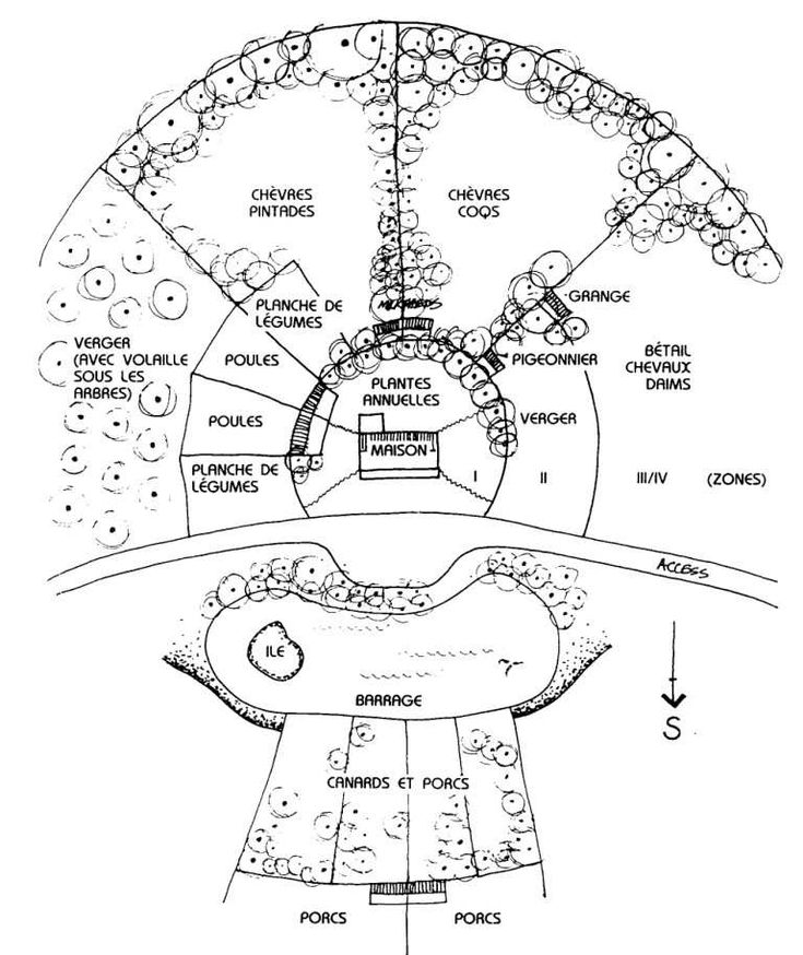 Plan demonstrating radial zones permaculture pinterest for Plan permaculture