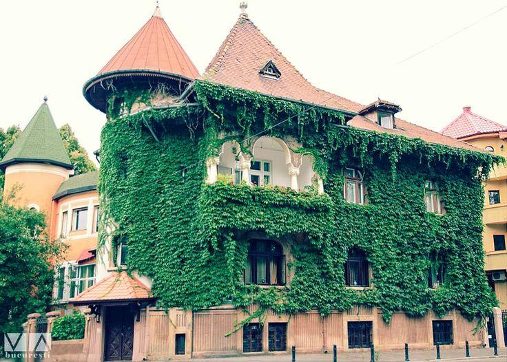 """un """"Palat"""" altfel, tot în Cotroceni   Foto: Alberto Groșescu"""