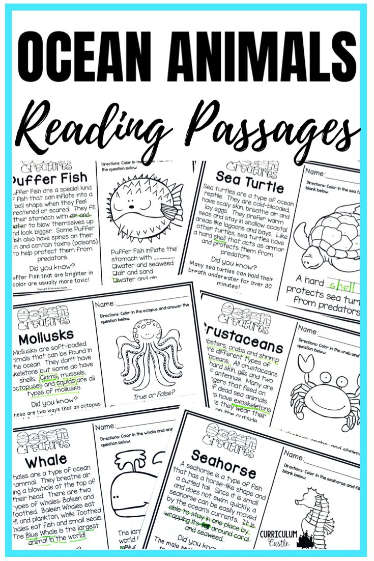 Ocean Exploration Unit All About Ocean Life Animals And Zones In 2020 Reading Passages Reading Comprehension Passages Ocean Activities