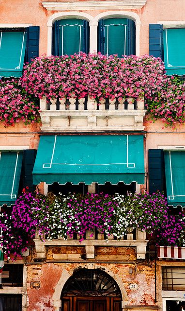 Balcony Windows & Window Boxes....