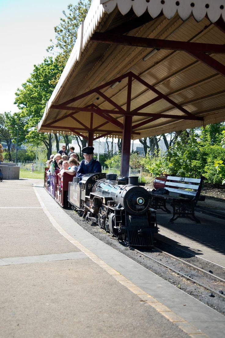 Choo Choo! Ride the steam train at South Marine Park, South Shields!