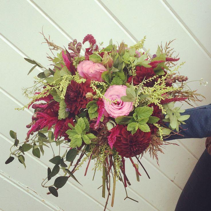 18 best september flowers images on pinterest farms massachusetts and blue and white. Black Bedroom Furniture Sets. Home Design Ideas
