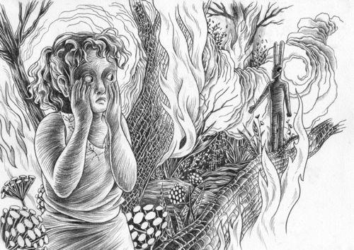 """Shiraz Fuman- """"Twin Flames"""""""