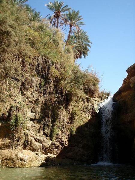 L'Oasis de montagne de Tamerza - Blog de Julien : deux ans en Tunisie