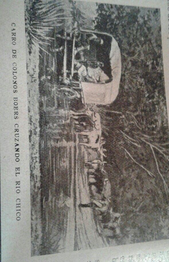 Boer settler cart crossing the Rio Chico river. 1904