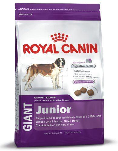 Royal Canin – Giant Junior 31 – Nourriture pour jeune chien – Très grandes races – 15 kg   Your #1 Source for Pet Supplies