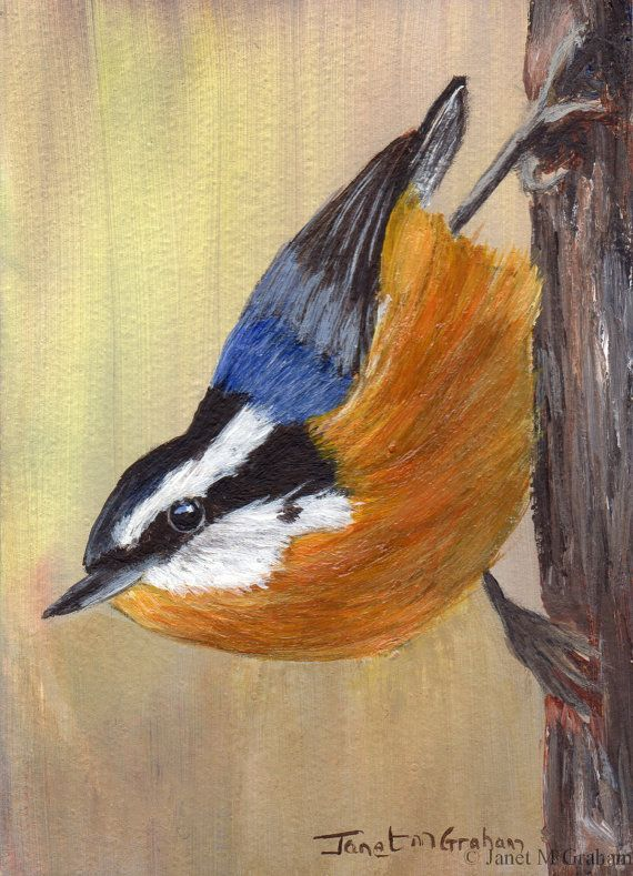 Red Breasted Nuthatch is an original ACEO acrylic painting hand painted by myself. Painted on Colourfix 500gsm Suede Paper using artist quality acrylic paints, the painting measures 2.5 x 3.5 inches (6.4 x 8.9 cm). The painting is unframed/unmounted/unmatted.  The base paper for Colourfix Suede is a 500gsm hot press watercolour paper. Colourfix Suede Paper is an archival quality surface suitable for use with a range of mediums including acrylics.   Please note that the image colours may vary…