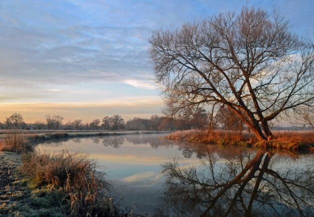 A Winter's day on the River Wey - Photos - Surrey