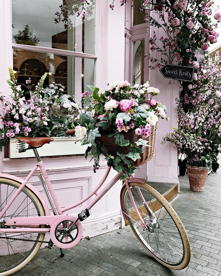 сегодня велосипед и цветы фото подается