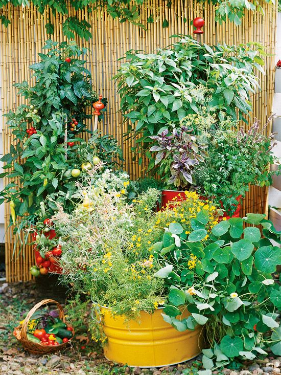 Container vegetable gardenGardens Ideas, Container Gardens, Veggie Gardens, Growing Vegetables, Vegetables Gardens, Small Spaces, Veggies Gardens, Container Gardening, Vegetable Garden