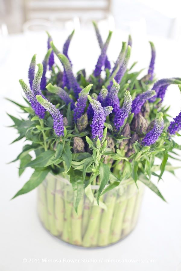 Veronica & Asparagus Arrangement
