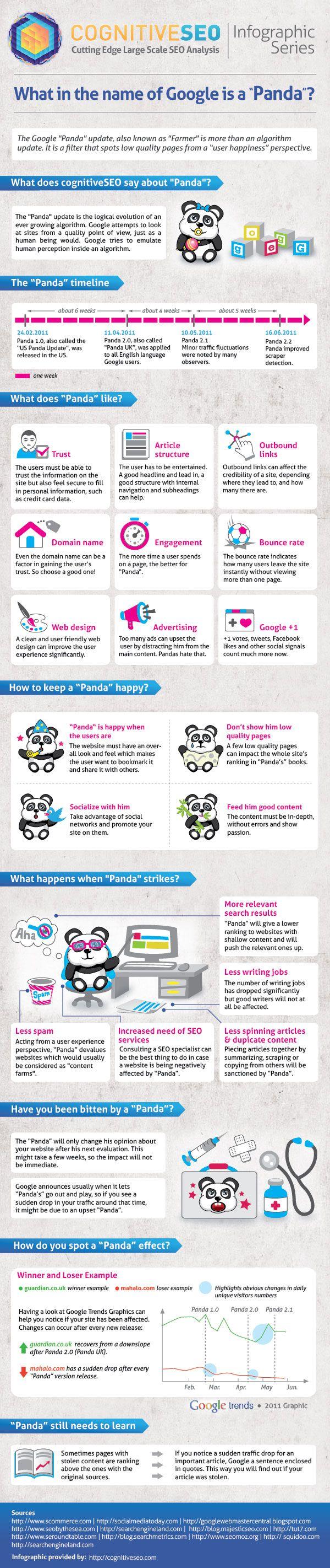 Cosa è realmente Google Panda? #infografica