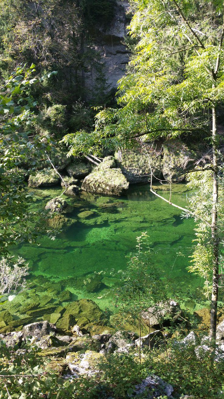 Der Weg zum Traunfall in Oberösterreich - Seit Jahren besucht unsere Kollegin Julia Gleisenberger ihre Verwandtschaft in #Oberösterreich. Heute nimmt sie Sie im Länder und Leute Blog mit auf einen Ausflug in die wunderschöne Natur...und Sie bekommen das weltbeste Sachertorten Rezept! :-)