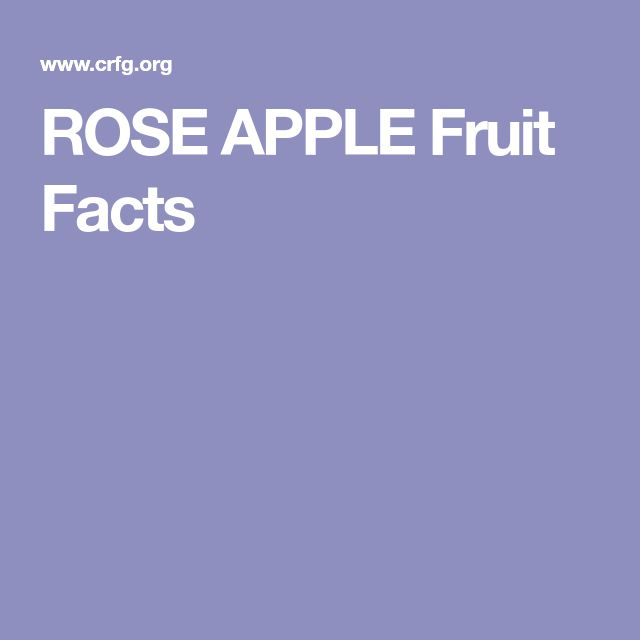 ROSE APPLE Fruit Facts