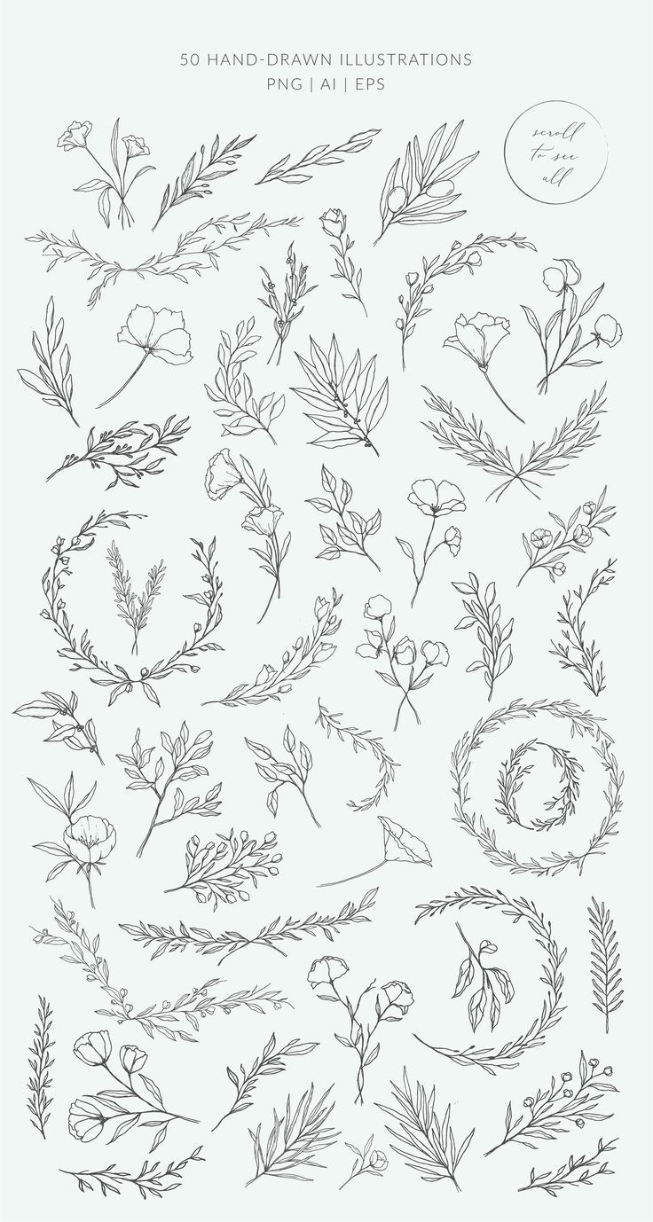 Botanical logos & illustrations by Crocus Paper o …