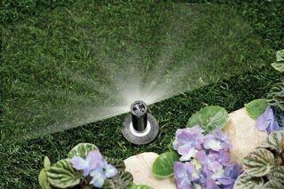 Sprinkler Shutdowns: New York Plantings Irrigation and Lighting Division Winterizing Service. New York Plantings Garden Designers and Landscape contracting 432 E 14st  New York, NY 10009 Call: 347-558-7051    site url:   http://www.newyorkplantings.com/  info@newyorkplantings.com