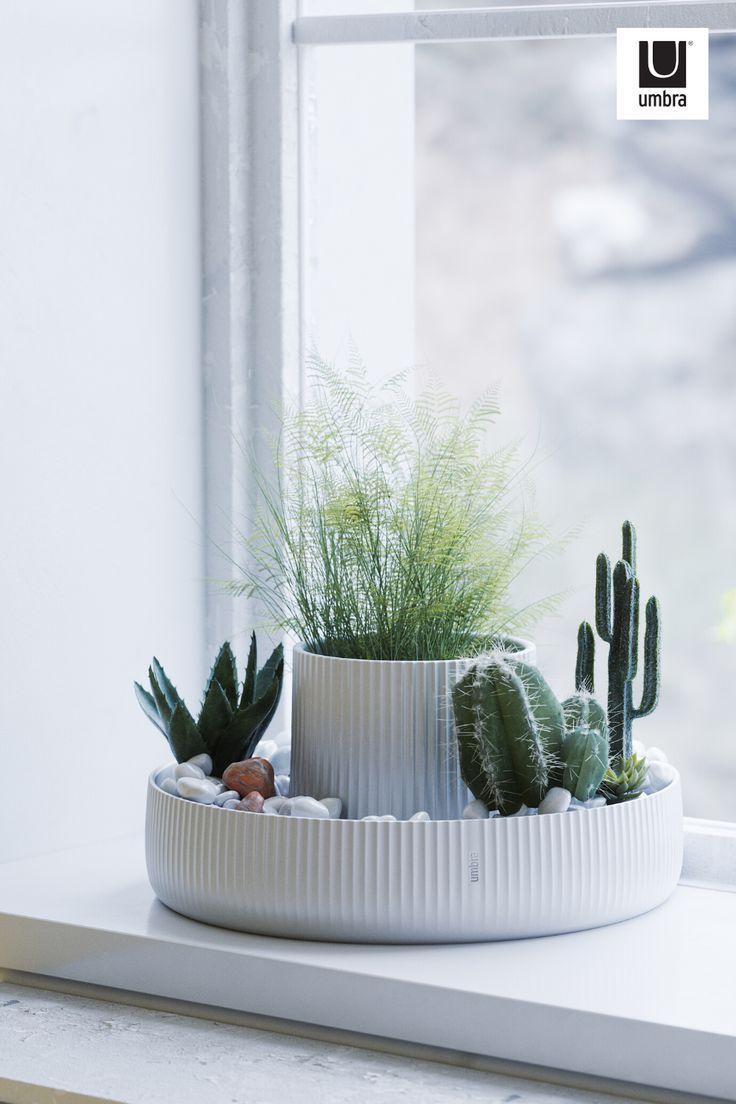 Indoor Planters, Ceramic Planters, Indoor Garden, Indoor Plant Decor, Hanging Planters, Room With Plants, House Plants Decor, Bedroom Plants Decor, Plant Aesthetic