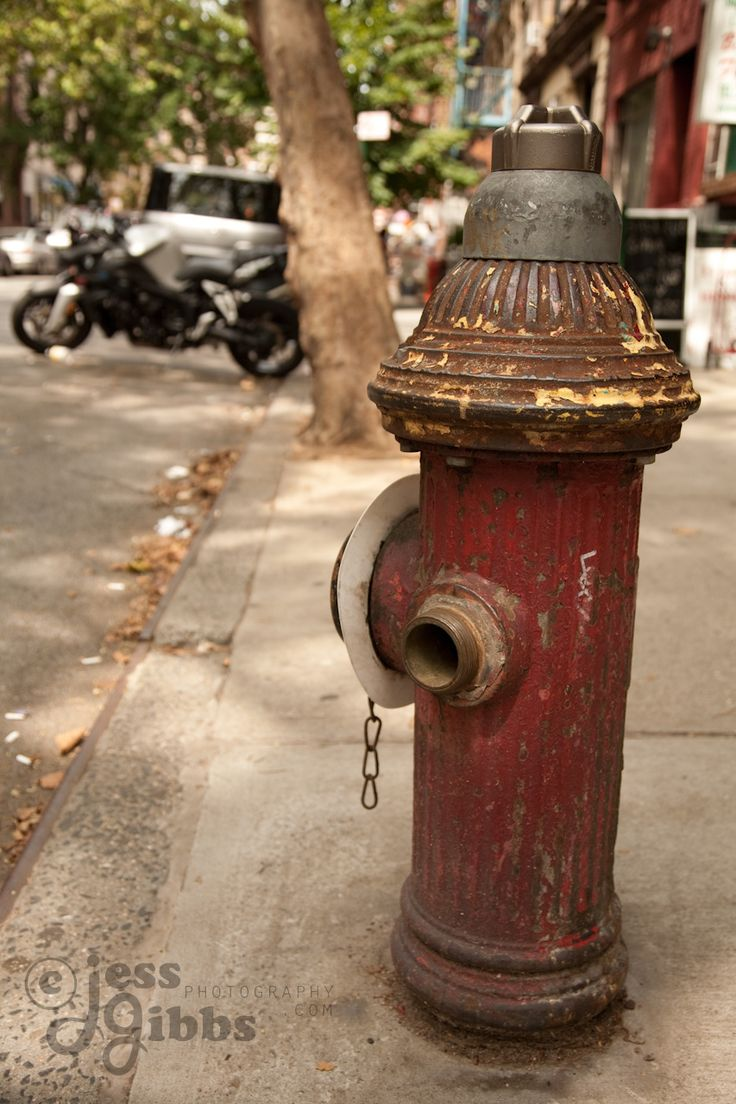 red_fire_hydrant_on_curb.jpg (853×1280)