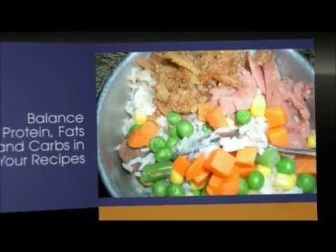 homemade dog food recipes for small dogs | homemade dog food | healthy homemade…