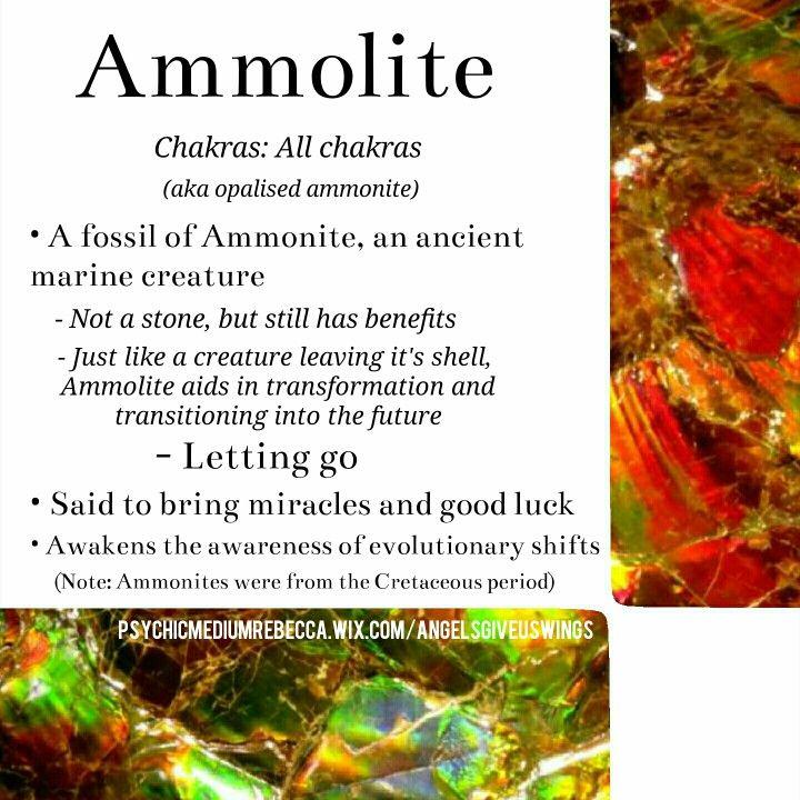 Ammolite benefits