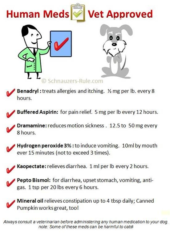 Human Medication Safe For Dogs-ALWAYS CALL THE VET FIRST!!!! BUT...these do work!