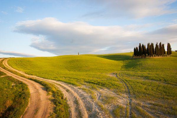 Anima Toscana Tours