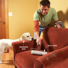 Remove pet hair with duct tape and a paint roller...brilliant!