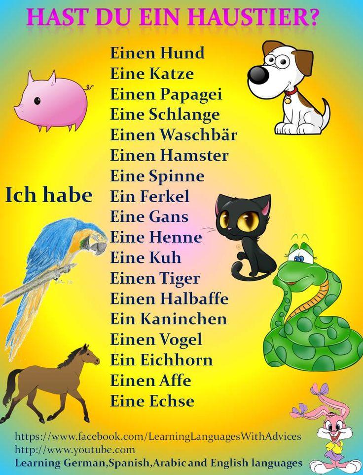 German pets