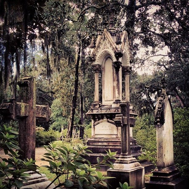 Spending an afternoon in Bonaventure Cemetery…