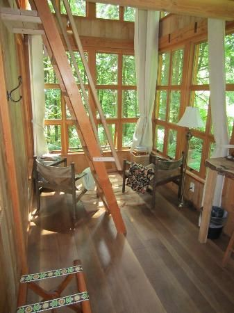 nice sunny room with loft treehouse point inside trillium