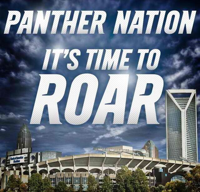 Carolina Panthers~ Playoffs baby!! Whoot whoot!