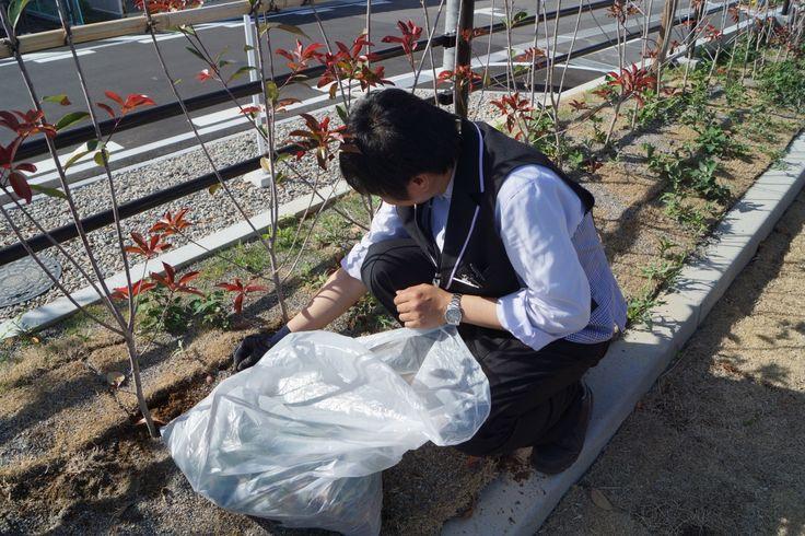 雑草生い茂る季節。早めの除去なり! #VEGAS1200 #season