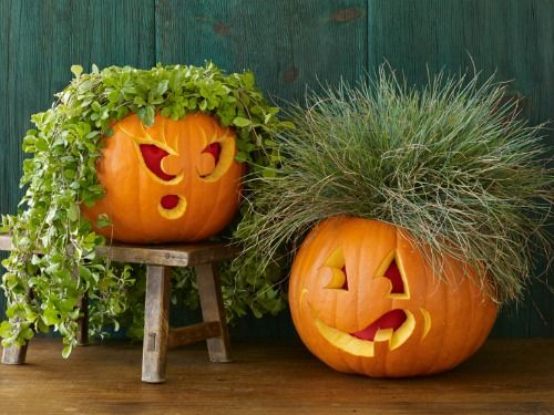 Funny Pumpkin Carving Ideas - Jack o Lanterns - Woman's Day - Plant People