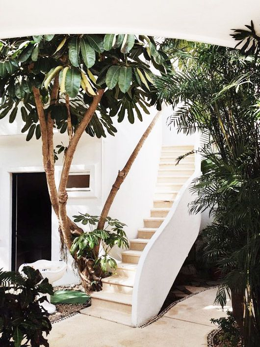 A whitewashed patio and tropical greenery will make you feel like you're always on vacation