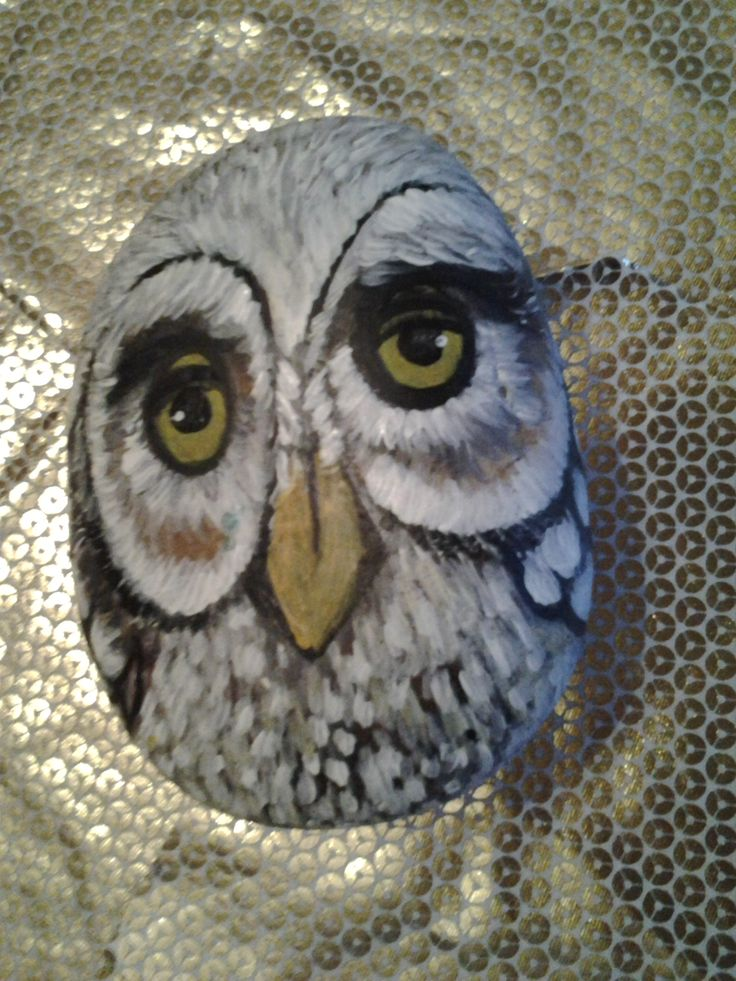 stone painted owl