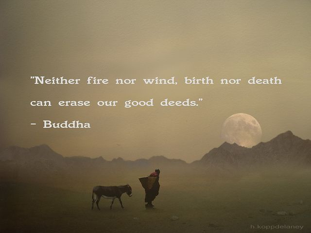 """Neither fire nor wind, birth nor death can erase our good deeds.""  Buddha Quote 93 by h.koppdelaney, via Flickr"