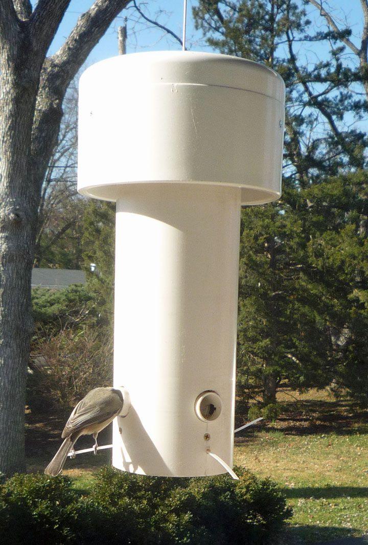 Grant MacLaren's Squirrel Proof Bird Feeder
